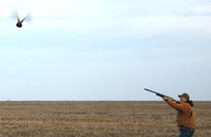 Burke Farms Hunting