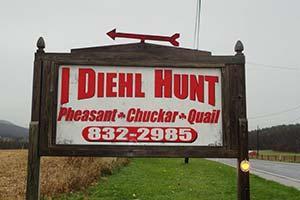 I Diehl Hunt Logo
