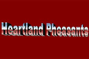 Heartland Pheasants