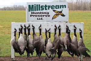 Millstream Hunting Preserve LLC
