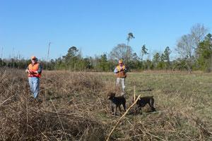 Roans Branch Hunting Preserve  Logo