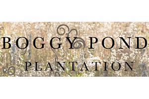 Boggy Pond Plantation Logo
