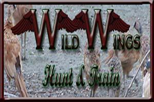Wild Wings Hunt & Train Logo
