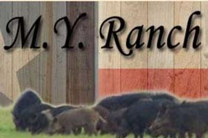 M.Y. Ranch Hunting Preserve Logo