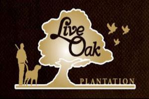 Live Oak Plantation Logo