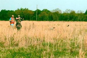 Casscoe Quail Hunting Club
