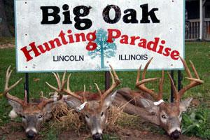 Big Oak Hunting Paradise