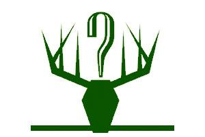 Y Question Outfitters