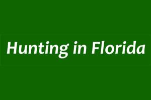 Hunting in Florida