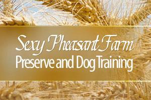 Sexy Pheasant Farm and Dog Training Preserve Logo