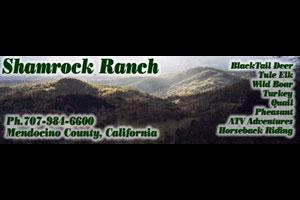 Shamrock Ranch Logo