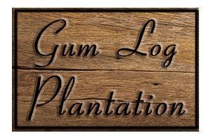 Gum Log Plantation