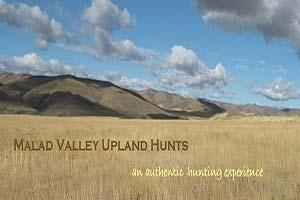 Malad Valley Upland Hunts