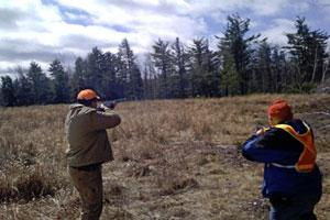 Western Mass Bird Dog Club