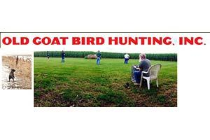 Old Goat Bird Hunting Inc.
