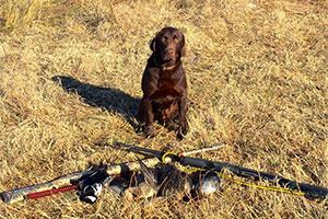 Pheasant Hill Outfitters