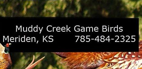 Muddy Creek Game Birds