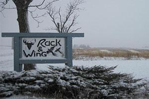 Rack & Wing