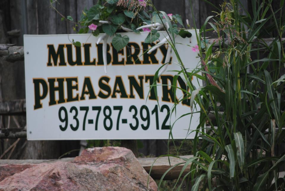Mulberry Pheasantry Logo