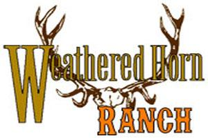 Weathered Horn Outfitters