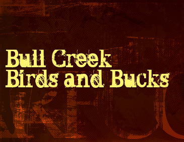 Bull Creek Birds and Bucks Logo