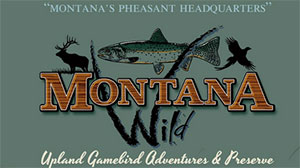 Rocky Mountain Roosters/Montana Wild