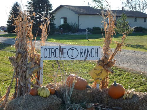 Circle J Ranch Logo