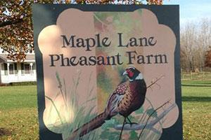 Maple Lane Hunting Preserve