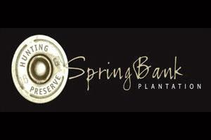 SpringBank Plantation Logo
