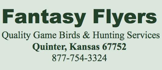 Fantasy Flyers