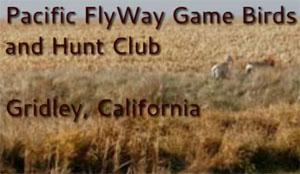Pacific FlyWay Game Birds