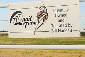 Triple 7 Quail Farm