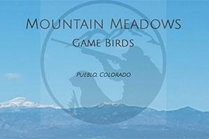Mountain Meadows Game Birds