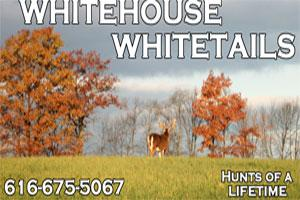 Whitehouse Whitetails Logo