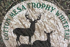 Cotton Mesa Trophy Whitetail Logo