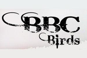 BBC Birds Logo