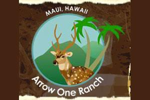 Arrow One Ranch