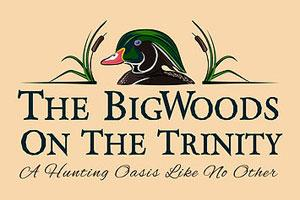 The BigWoods on the Trinity