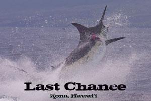 Last Chance Sport Fishing