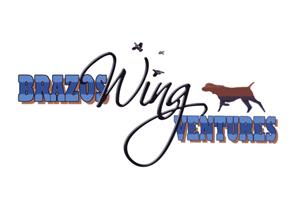 Brazos Wingventures