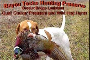 Bayou Teche Hunting Preserve Logo