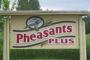 Pheasants Plus