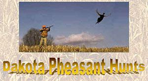 Dakota Pheasant Hunts
