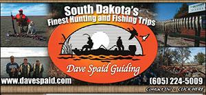 Dave Spaid Guiding Logo