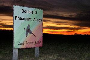 Double D Pheasant Acres Logo