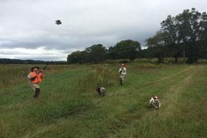 Circle W Hunting Preserve