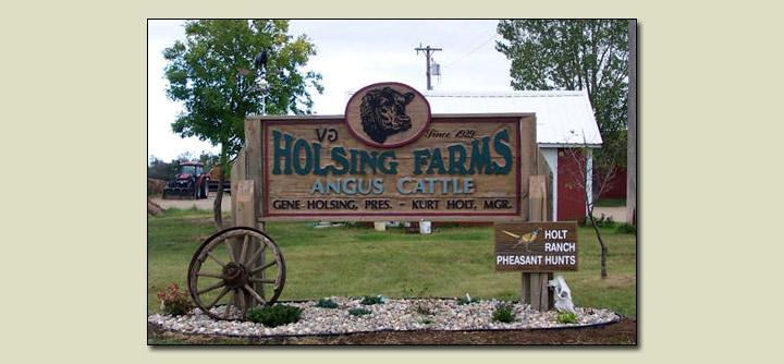 Holt Ranch LLC Pheasant Hunts
