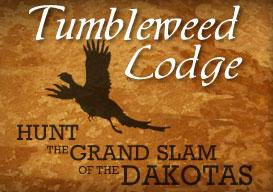 Tumbleweed Lodge