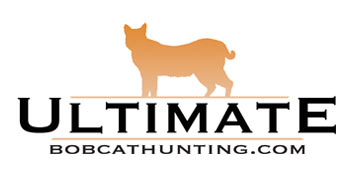 Ultimate Bobcat Hunting